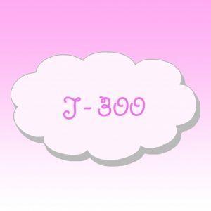 J - 300 bilan